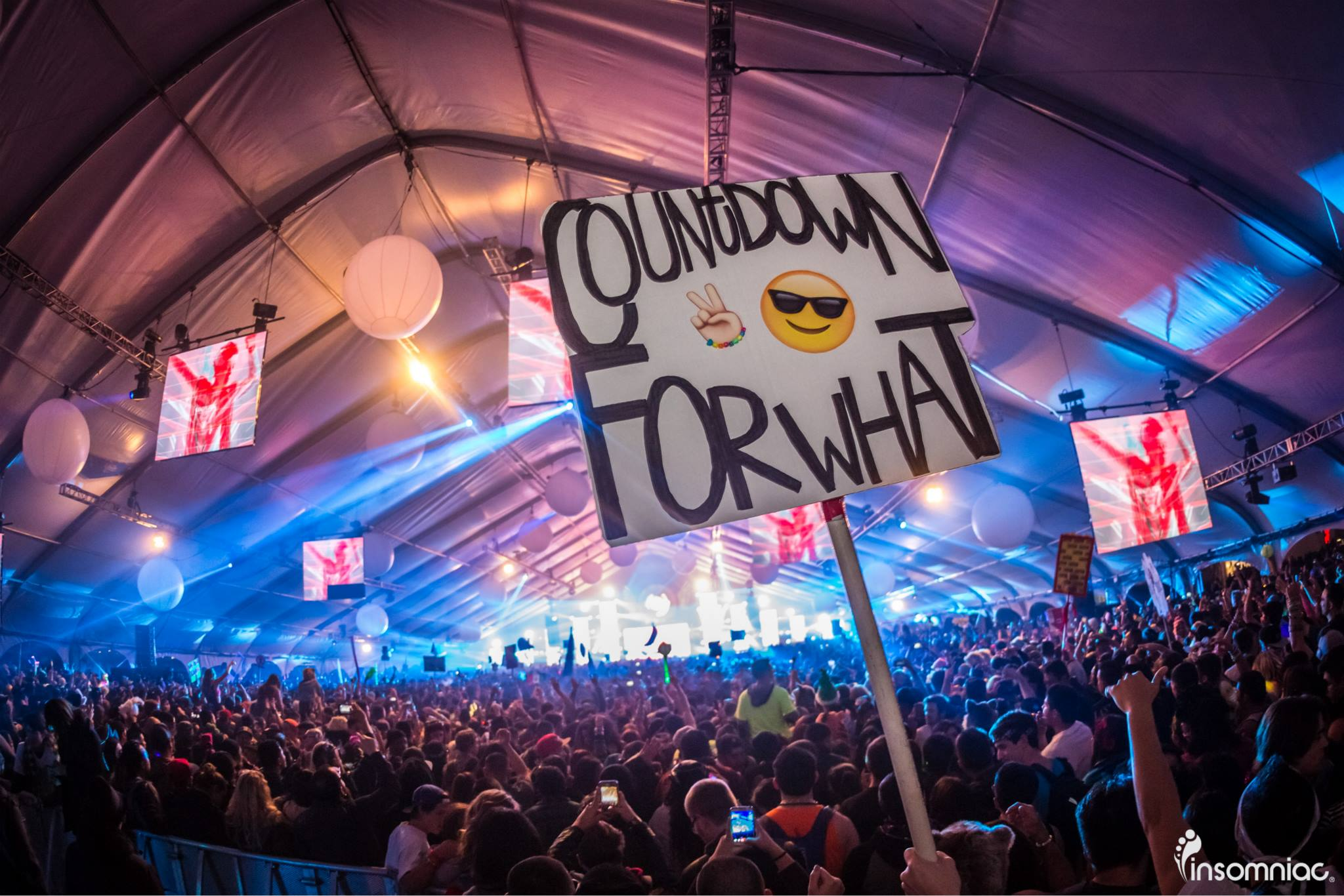 Image result for insomniac countdown